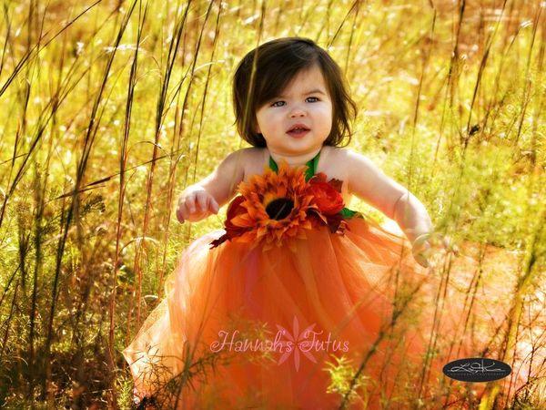 Sweet Little Quot Flower Fairies Quot Wpic