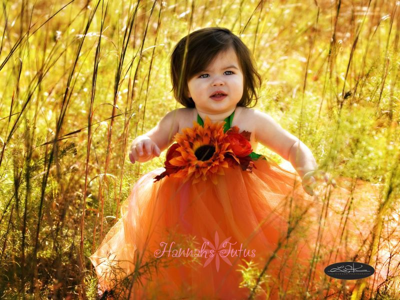Fairy dress orange