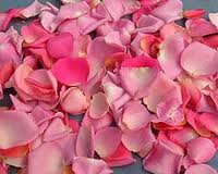 Freeze-dried rose petals